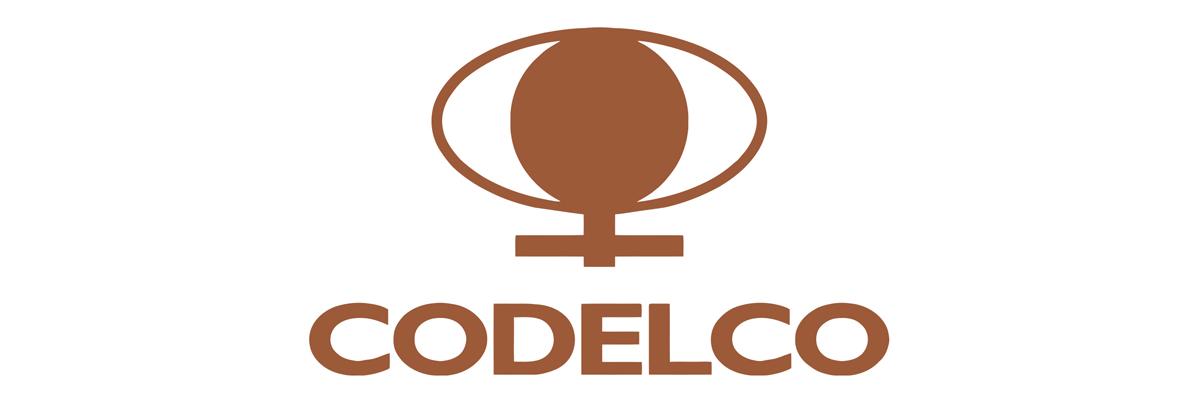 CODELCO (TODAS SUS DIVISIONES)