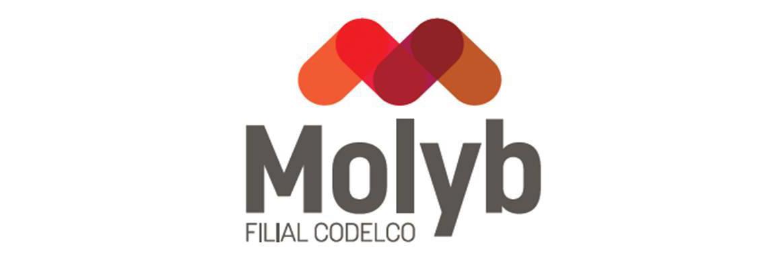 MOLYB
